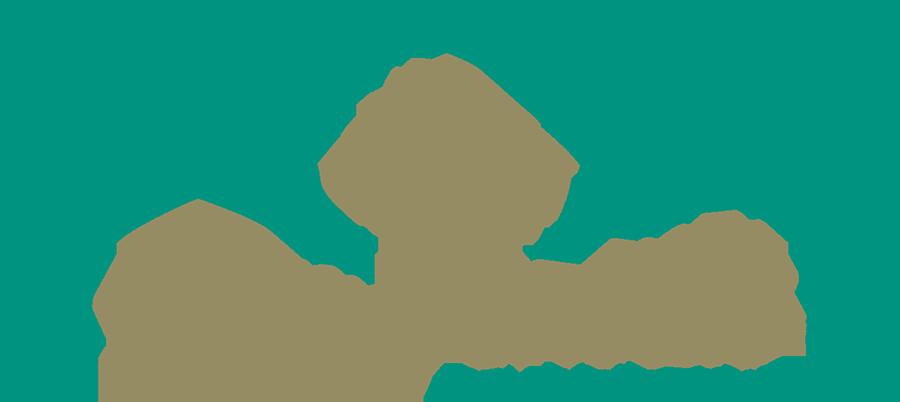 Thomas Crivello Real Estate Group